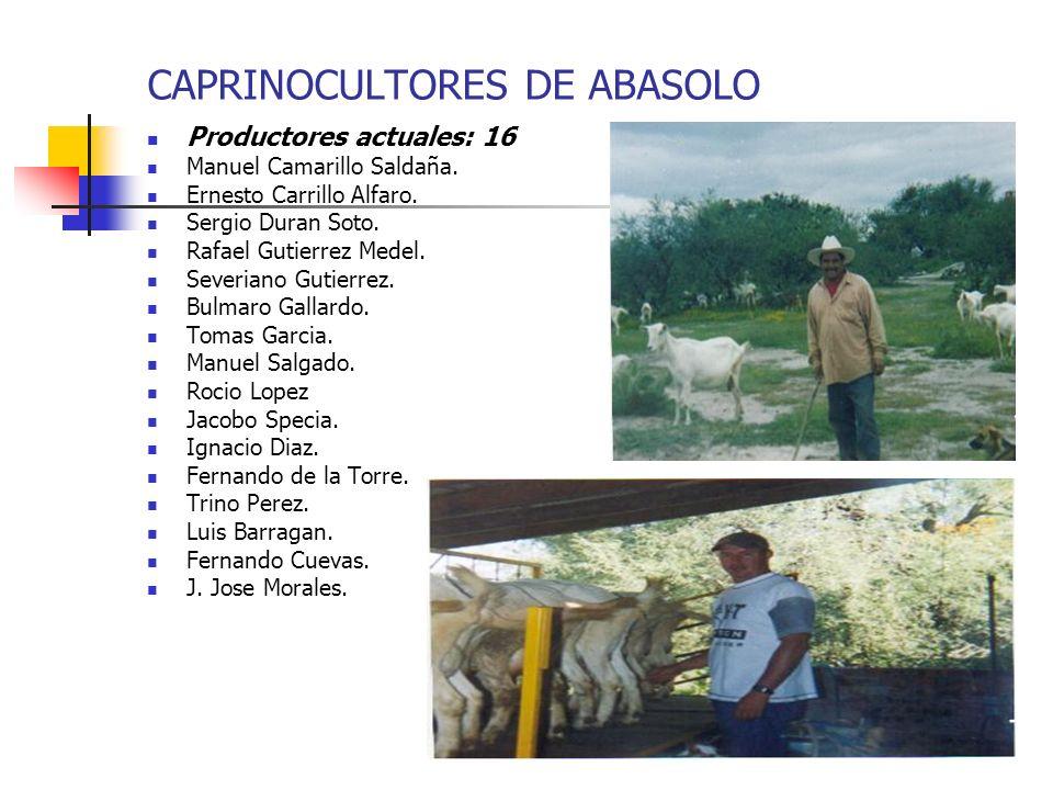 CAPRINOCULTORES DE ABASOLO