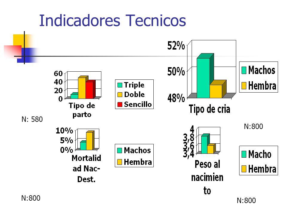 Indicadores Tecnicos N: 580 N:800 N:800 N:800