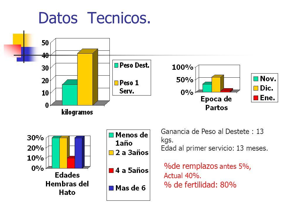 Datos Tecnicos. %de remplazos antes 5%, % de fertilidad: 80%
