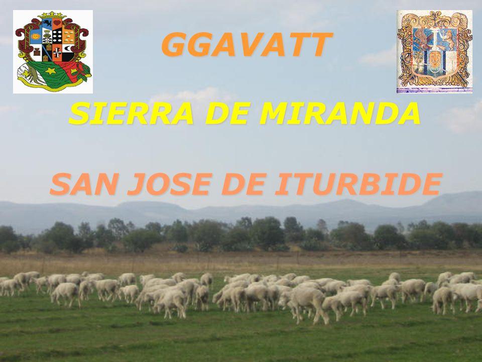 GGAVATT SIERRA DE MIRANDA SAN JOSE DE ITURBIDE