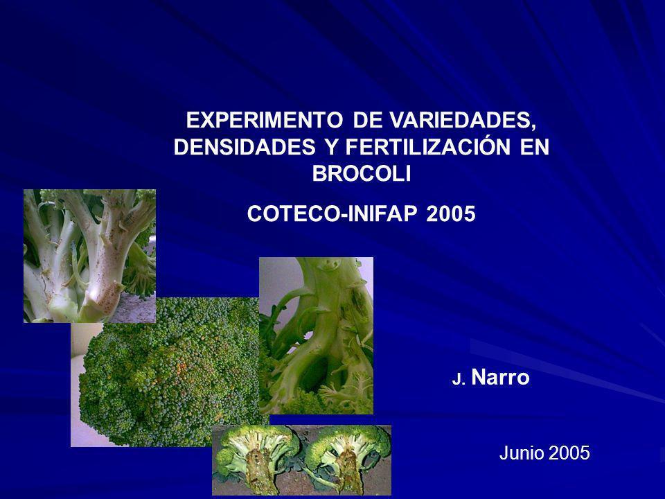 EXPERIMENTO DE VARIEDADES, DENSIDADES Y FERTILIZACIÓN EN BROCOLI