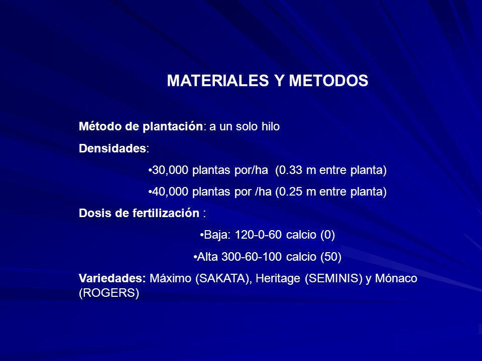 MATERIALES Y METODOS Método de plantación: a un solo hilo Densidades: