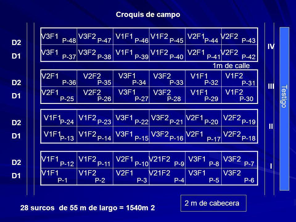 Croquis de campo IV III II I V3F1 V3F2 V1F1 V1F2 V2F1 V2F2 D2 D1 V3F1