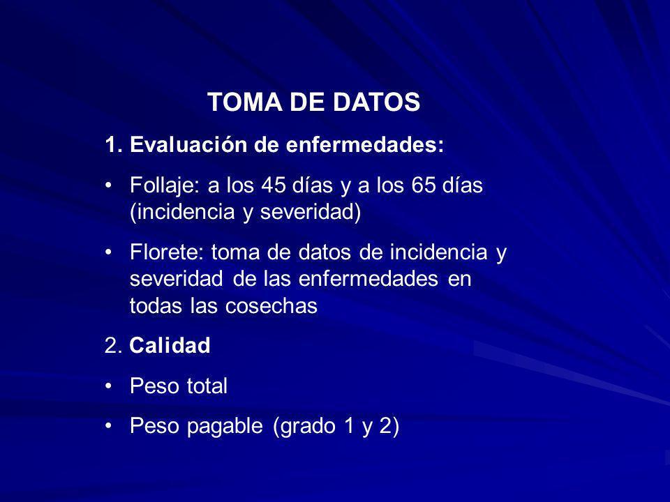 TOMA DE DATOS Evaluación de enfermedades: