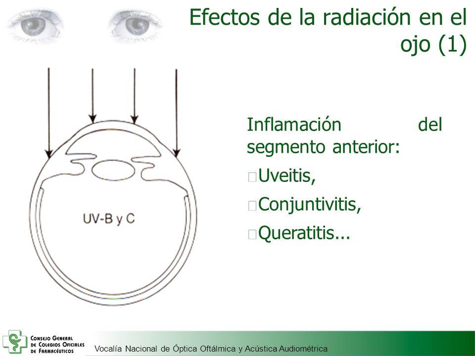 Efectos de la radiación en el ojo (1)