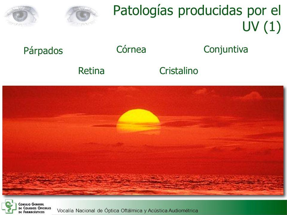 Patologías producidas por el UV (1)