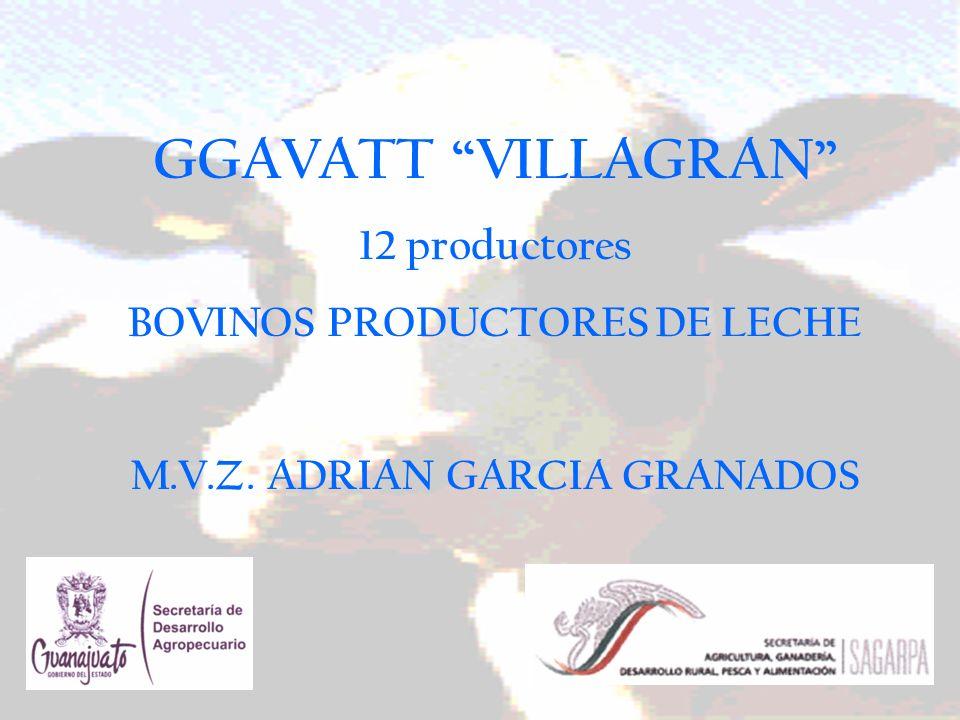 BOVINOS PRODUCTORES DE LECHE M.V.Z. ADRIAN GARCIA GRANADOS