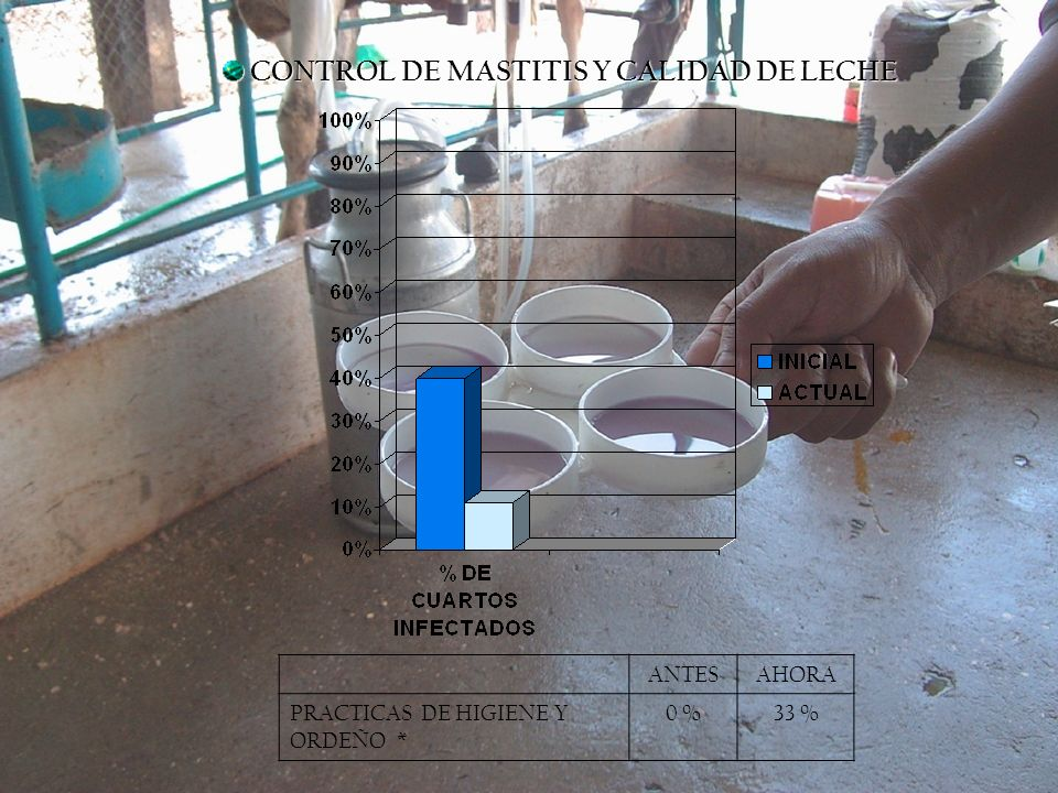 CONTROL DE MASTITIS Y CALIDAD DE LECHE