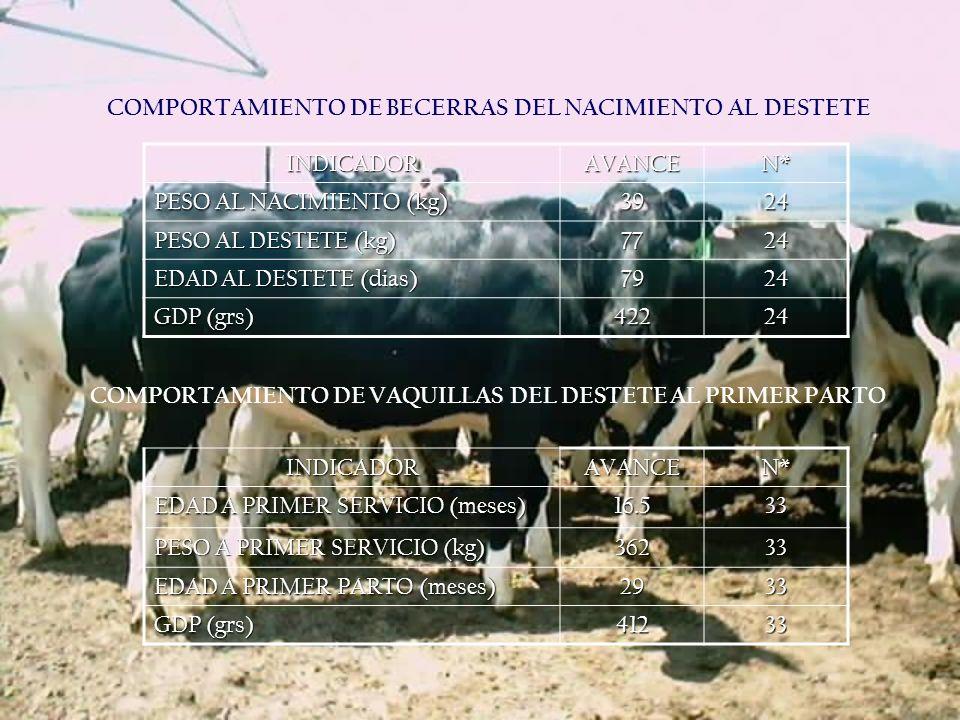 COMPORTAMIENTO DE BECERRAS DEL NACIMIENTO AL DESTETE INDICADOR AVANCE
