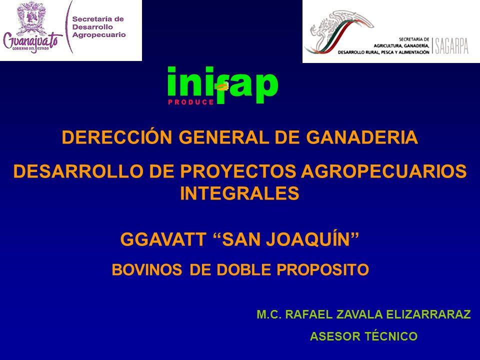 DERECCIÓN GENERAL DE GANADERIA