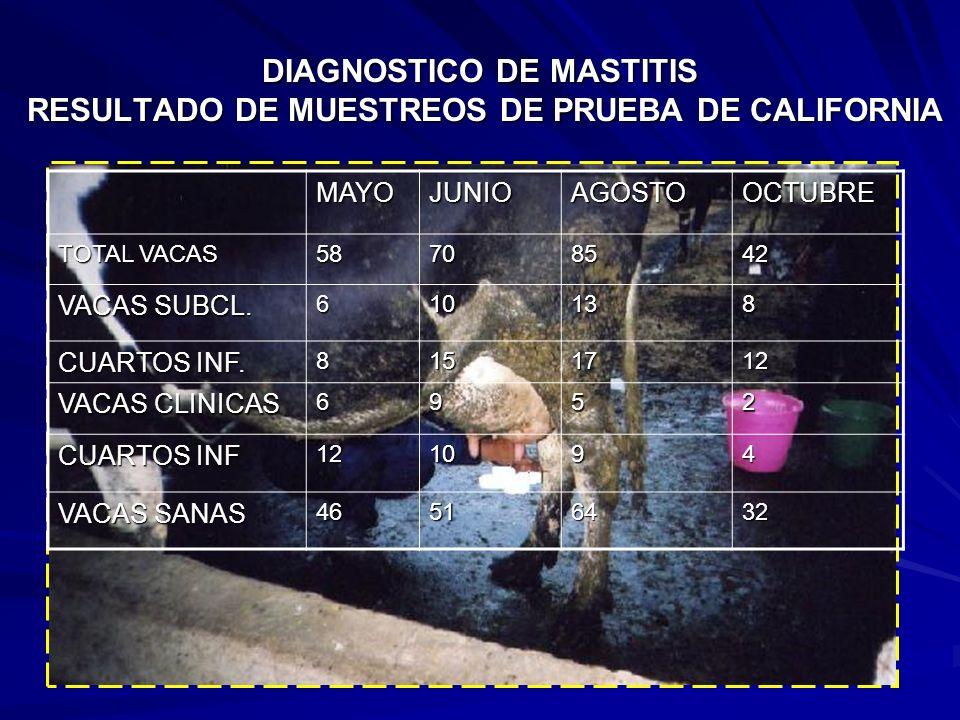 DIAGNOSTICO DE MASTITIS RESULTADO DE MUESTREOS DE PRUEBA DE CALIFORNIA