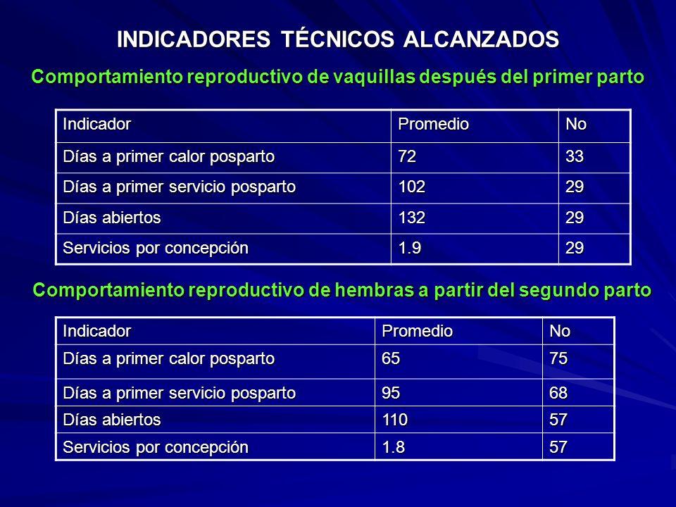INDICADORES TÉCNICOS ALCANZADOS