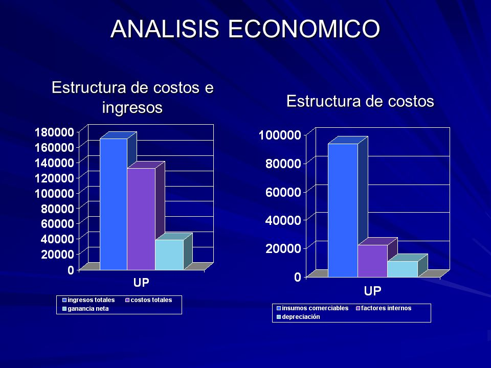 Estructura de costos e ingresos