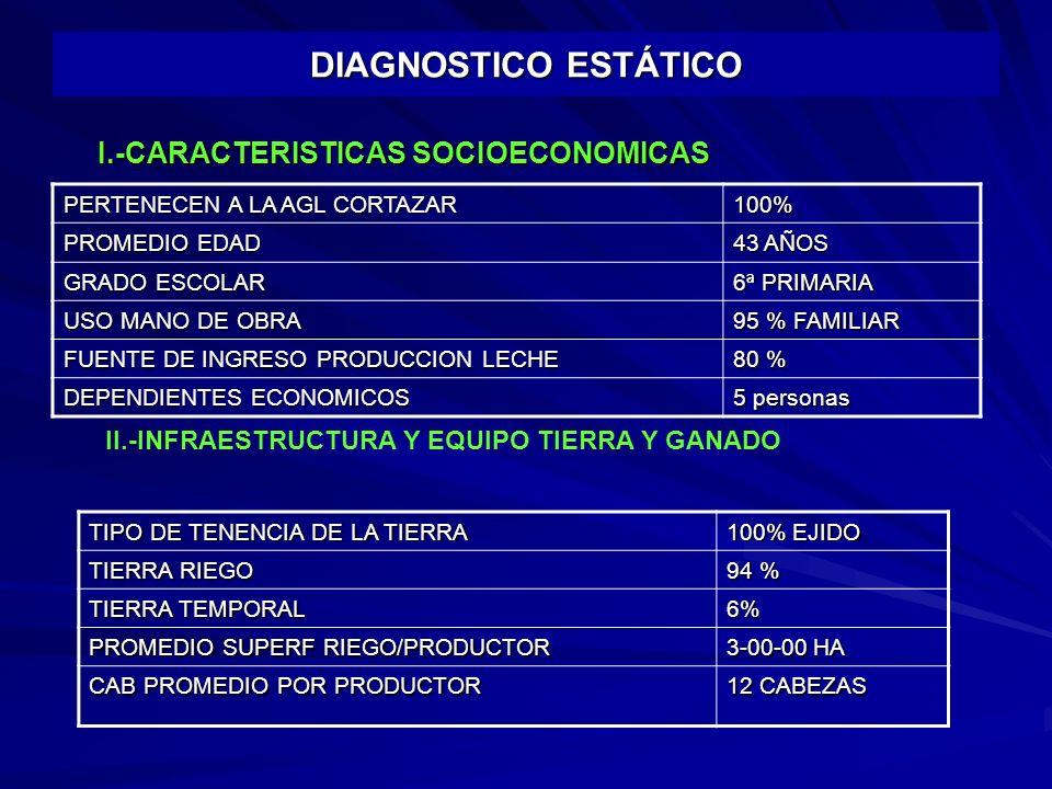 DIAGNOSTICO ESTÁTICO I.-CARACTERISTICAS SOCIOECONOMICAS
