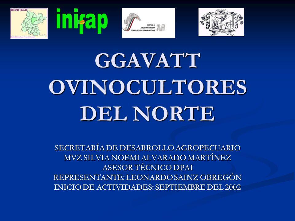 GGAVATT OVINOCULTORES DEL NORTE