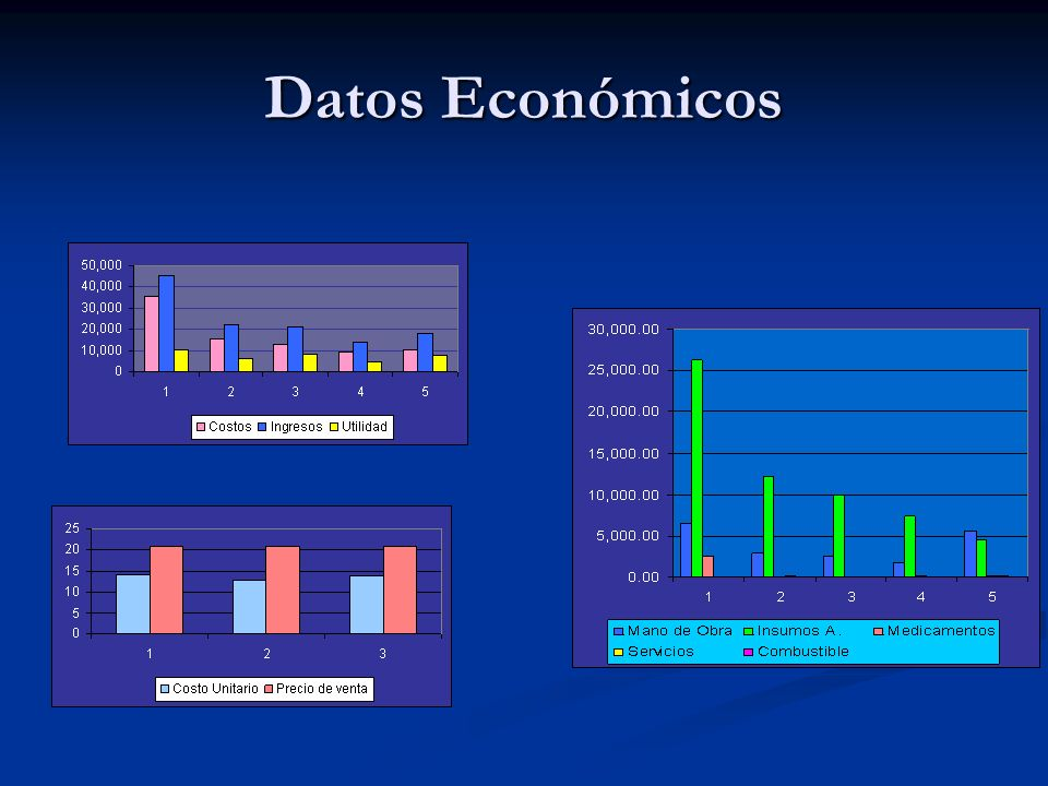 Datos Económicos