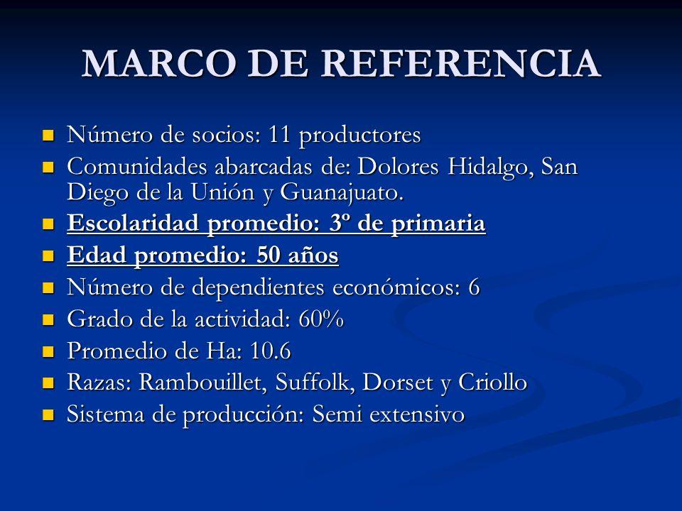 MARCO DE REFERENCIA Número de socios: 11 productores