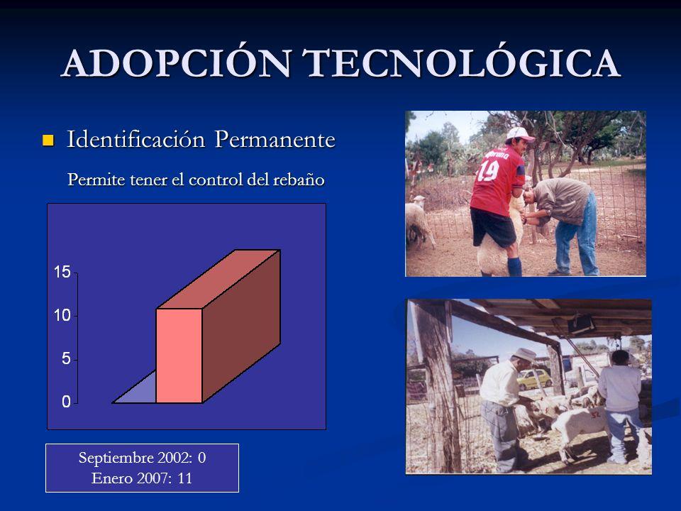 ADOPCIÓN TECNOLÓGICA Identificación Permanente