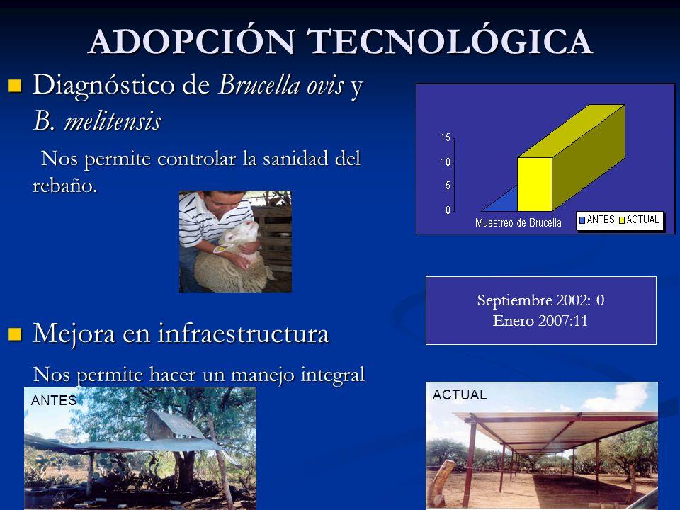 ADOPCIÓN TECNOLÓGICA Diagnóstico de Brucella ovis y B. melitensis