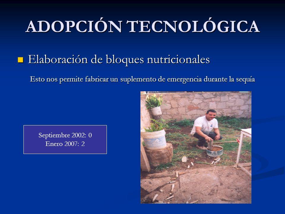 ADOPCIÓN TECNOLÓGICA Elaboración de bloques nutricionales