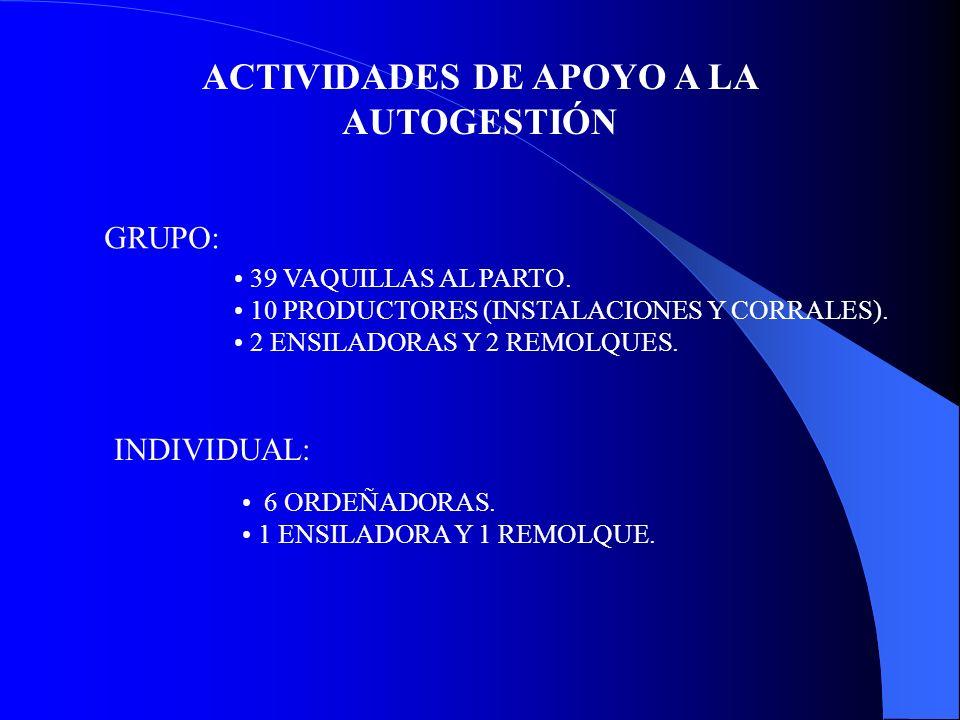 ACTIVIDADES DE APOYO A LA AUTOGESTIÓN