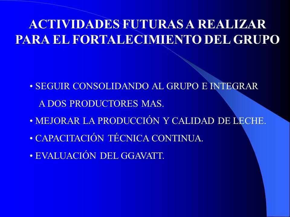 ACTIVIDADES FUTURAS A REALIZAR PARA EL FORTALECIMIENTO DEL GRUPO