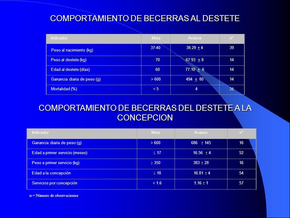 COMPORTAMIENTO DE BECERRAS AL DESTETE