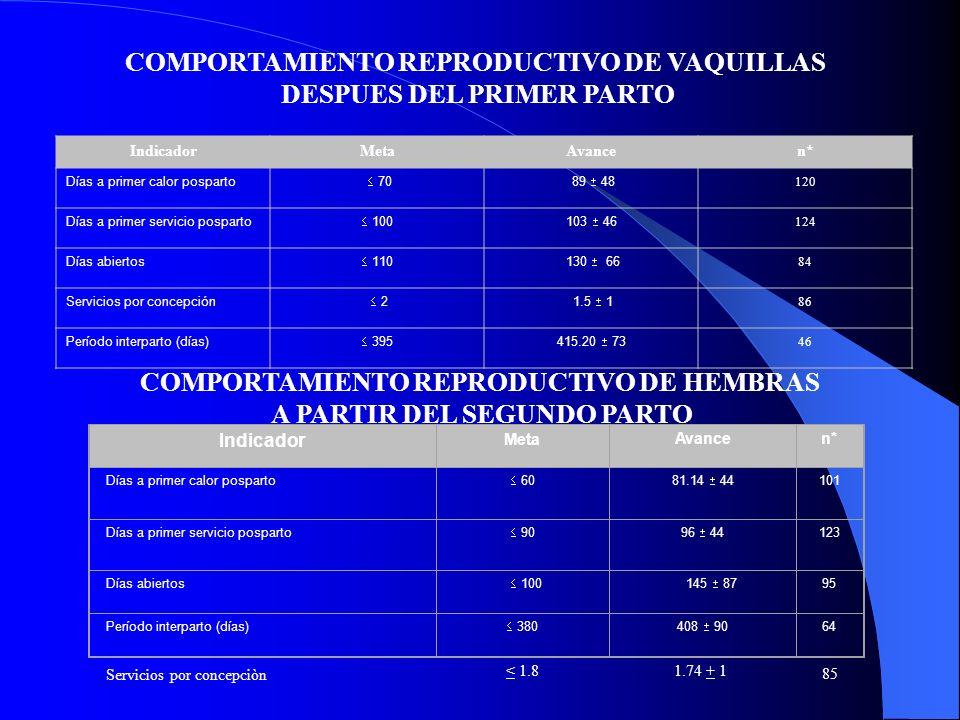 COMPORTAMIENTO REPRODUCTIVO DE VAQUILLAS DESPUES DEL PRIMER PARTO