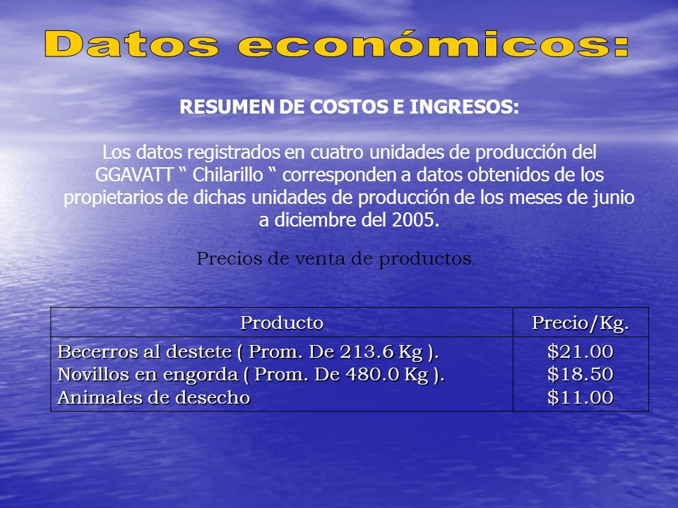 RESUMEN DE COSTOS E INGRESOS: