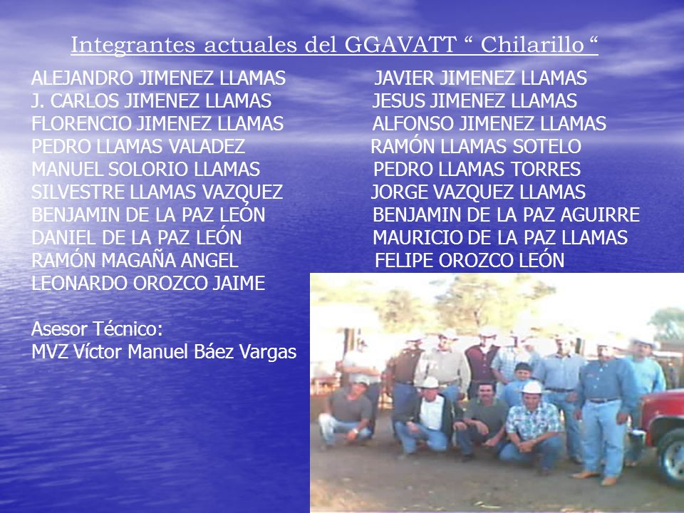 Integrantes actuales del GGAVATT Chilarillo
