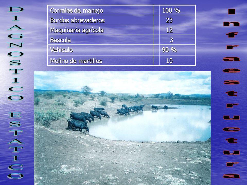 DIAGNOSTICO ESTATICO Infraestructura Corrales de manejo 100 %