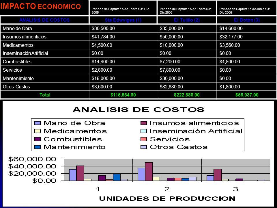 IMPACTO ECONOMICO ANALISIS DE COSTOS Sta Edwviges (1) El Tulillo (2)