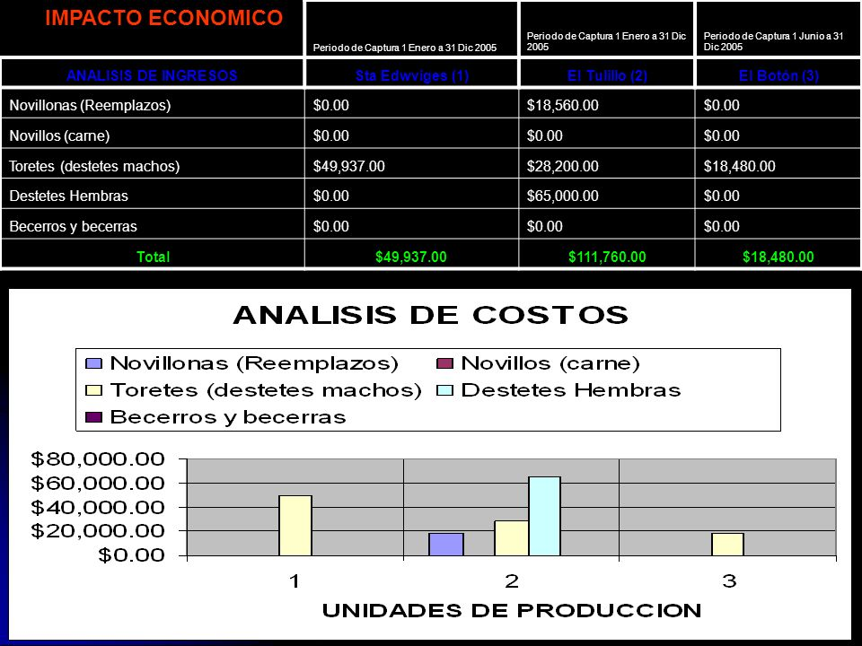 IMPACTO ECONOMICO ANALISIS DE INGRESOS Sta Edwviges (1) El Tulillo (2)