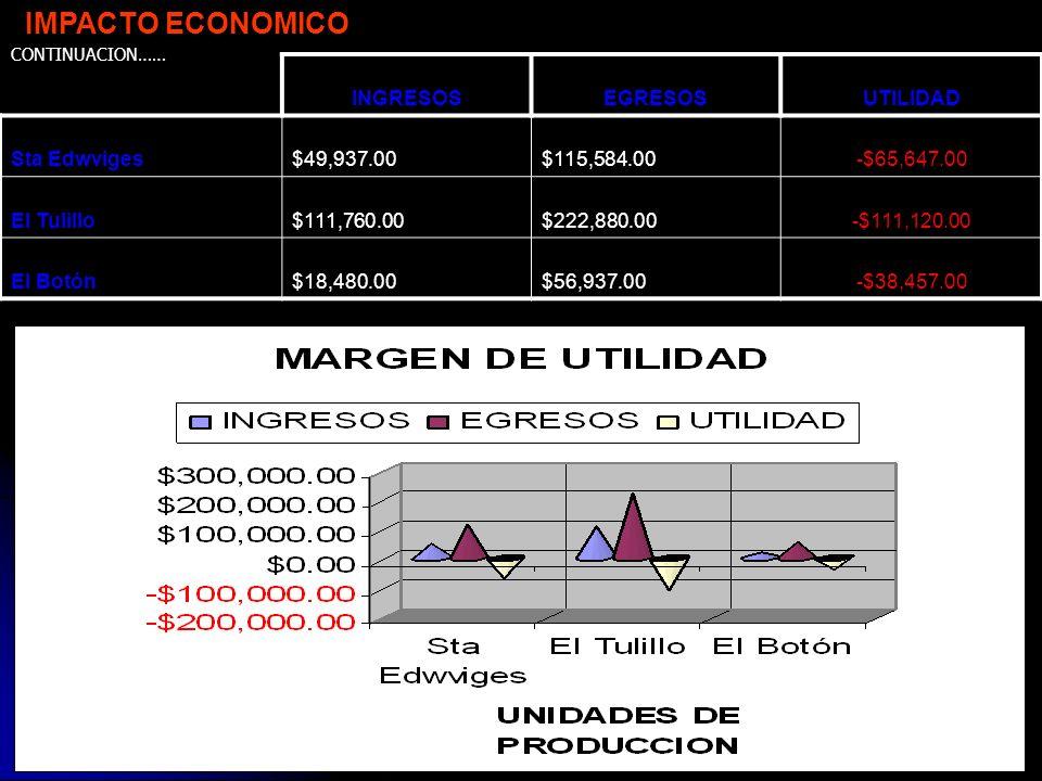 IMPACTO ECONOMICO INGRESOS EGRESOS UTILIDAD Sta Edwviges $49,937.00