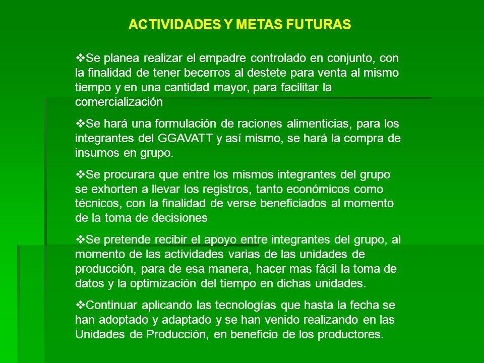 ACTIVIDADES Y METAS FUTURAS