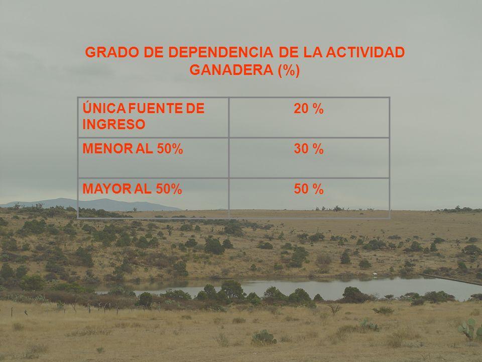 GRADO DE DEPENDENCIA DE LA ACTIVIDAD GANADERA (%)