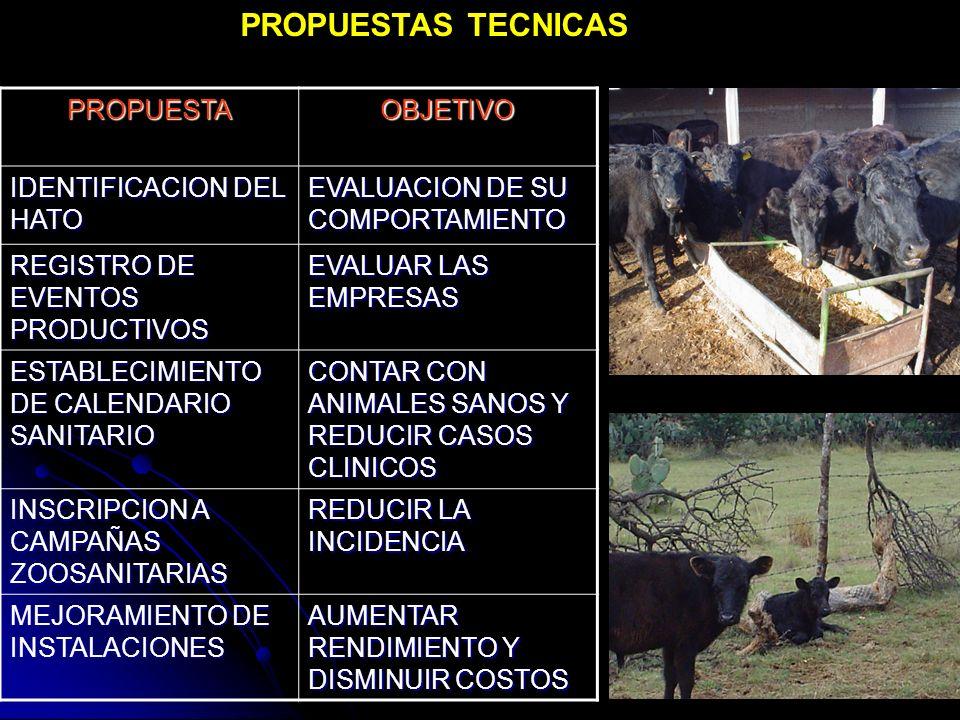 PROPUESTAS TECNICAS PROPUESTA OBJETIVO IDENTIFICACION DEL HATO