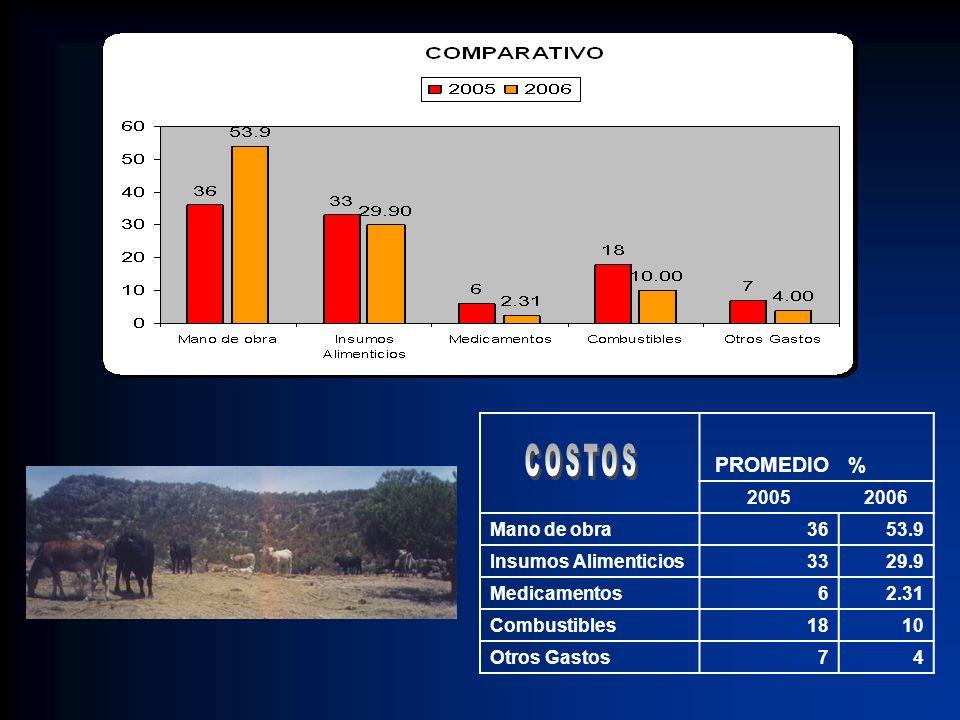 COSTOS PROMEDIO % 2005 2006 Mano de obra 36 53.9 Insumos Alimenticios