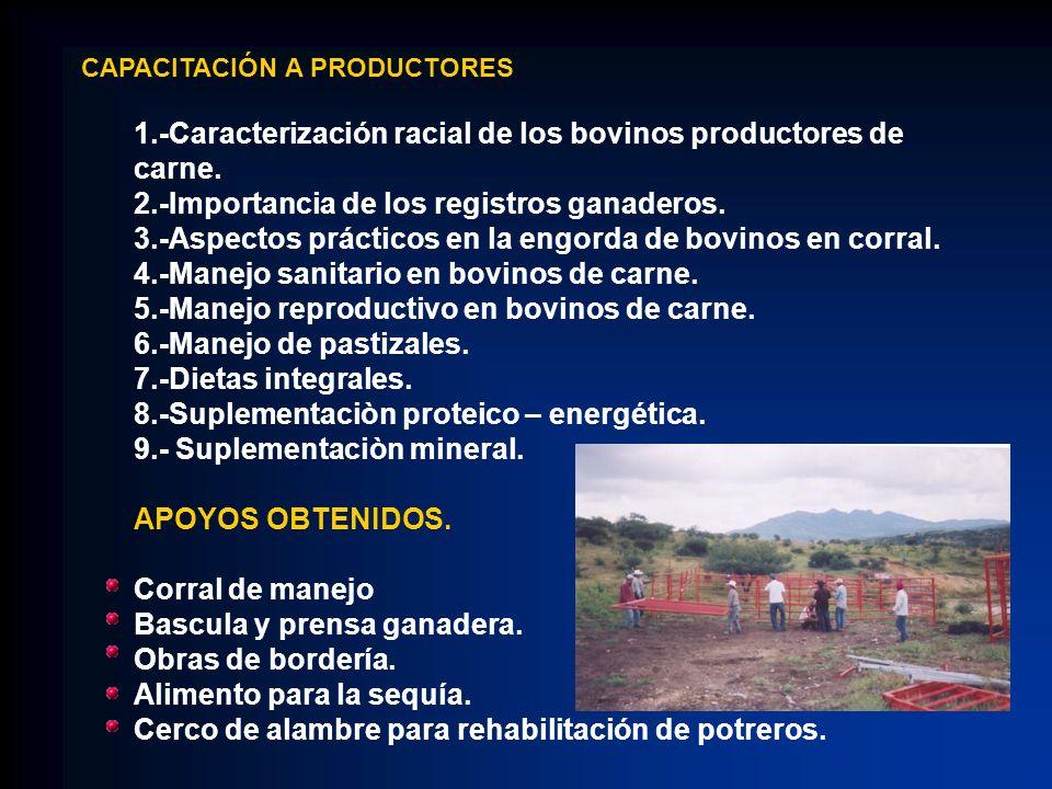1.-Caracterización racial de los bovinos productores de carne.