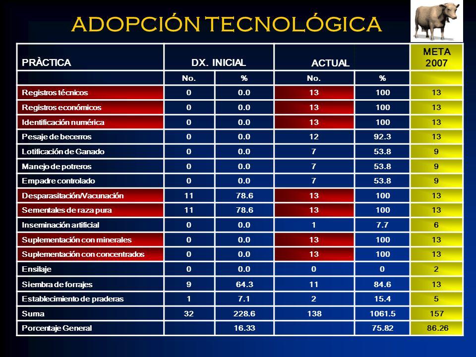ADOPCIÓN TECNOLÓGICA PRÀCTICA DX. INICIAL ACTUAL META 2007 No. %