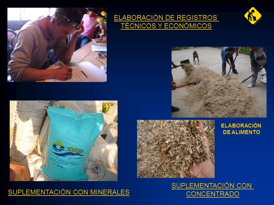 ELABORACIÓN DE REGISTROS