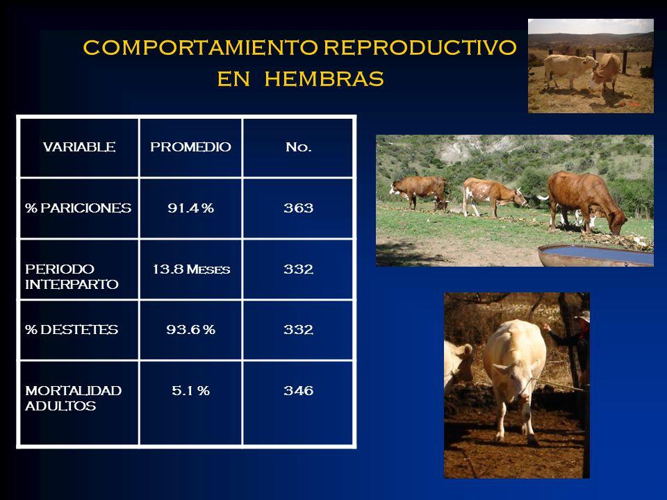 comportamiento reproductivo en hembras