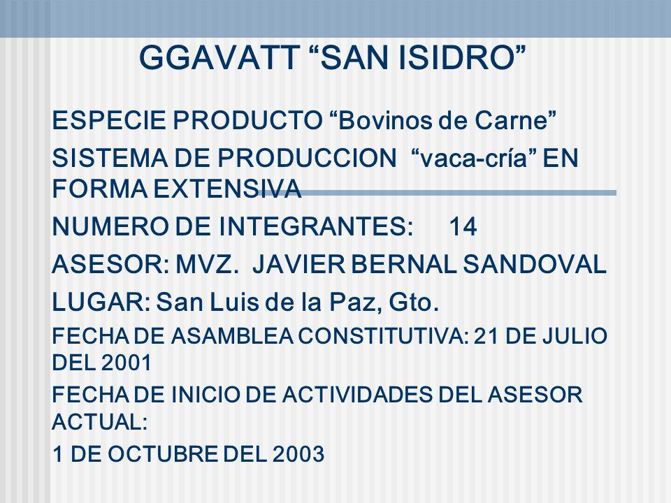 GGAVATT SAN ISIDRO ESPECIE PRODUCTO Bovinos de Carne
