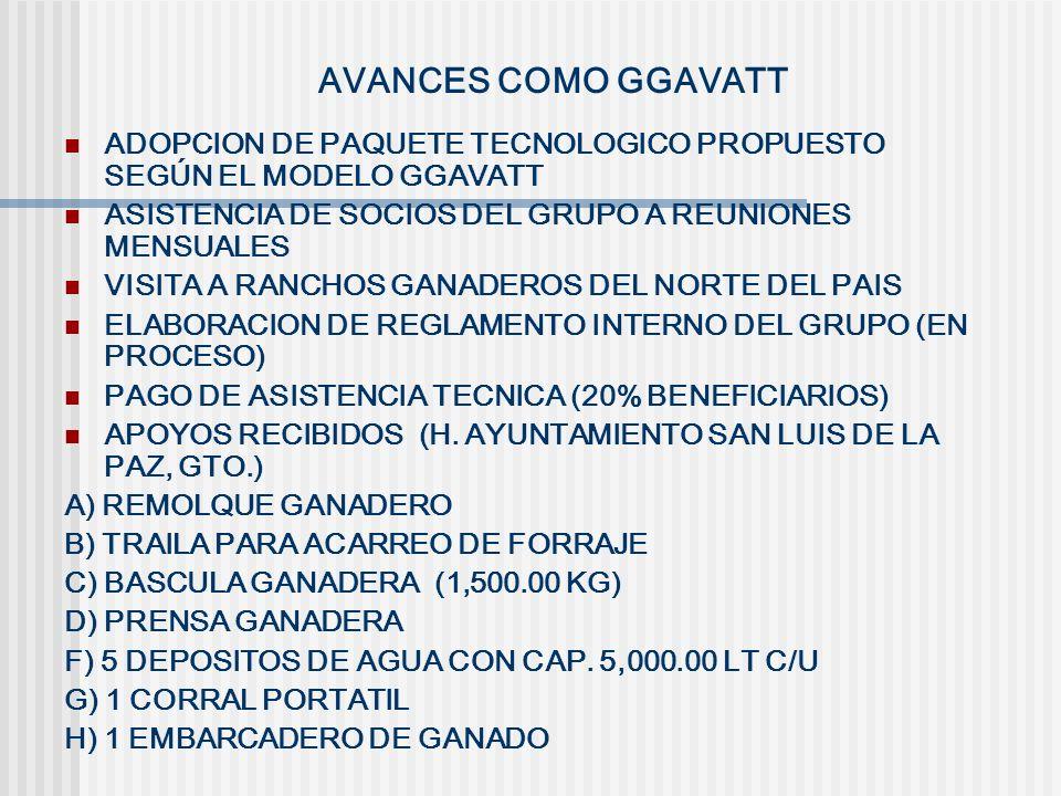 AVANCES COMO GGAVATT ADOPCION DE PAQUETE TECNOLOGICO PROPUESTO SEGÚN EL MODELO GGAVATT. ASISTENCIA DE SOCIOS DEL GRUPO A REUNIONES MENSUALES.