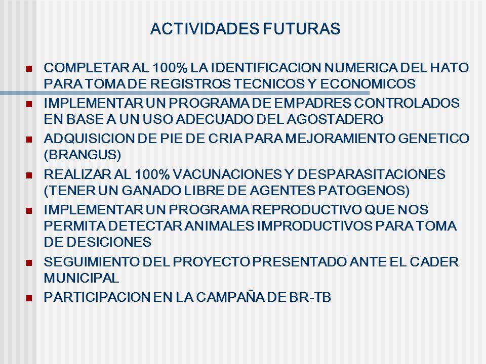 ACTIVIDADES FUTURAS COMPLETAR AL 100% LA IDENTIFICACION NUMERICA DEL HATO PARA TOMA DE REGISTROS TECNICOS Y ECONOMICOS.