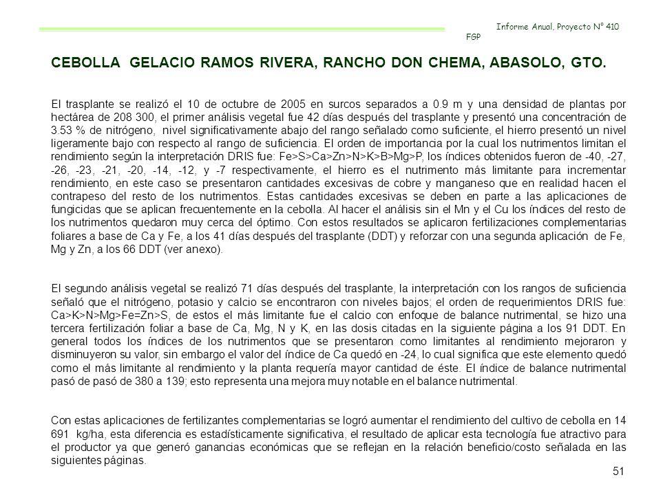 CEBOLLA GELACIO RAMOS RIVERA, RANCHO DON CHEMA, ABASOLO, GTO.
