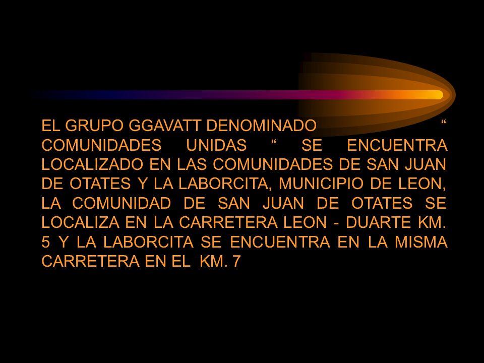 EL GRUPO GGAVATT DENOMINADO COMUNIDADES UNIDAS SE ENCUENTRA LOCALIZADO EN LAS COMUNIDADES DE SAN JUAN DE OTATES Y LA LABORCITA, MUNICIPIO DE LEON, LA COMUNIDAD DE SAN JUAN DE OTATES SE LOCALIZA EN LA CARRETERA LEON - DUARTE KM.