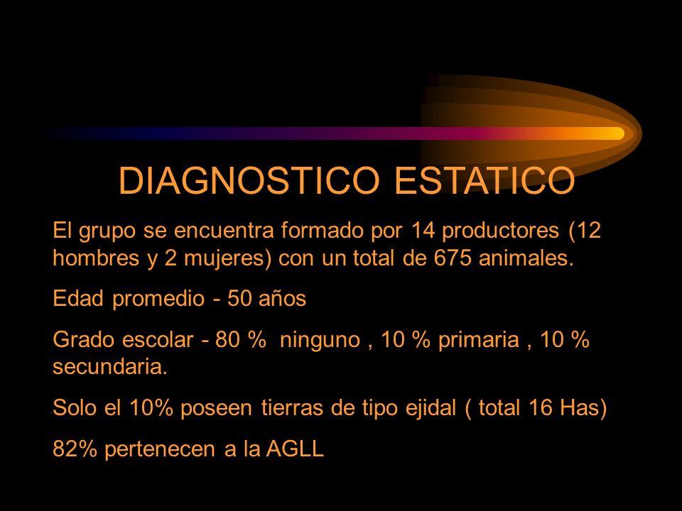 DIAGNOSTICO ESTATICO El grupo se encuentra formado por 14 productores (12 hombres y 2 mujeres) con un total de 675 animales.