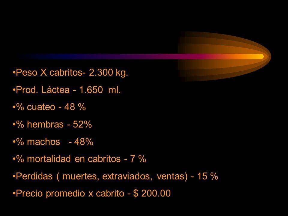 Peso X cabritos- 2.300 kg. Prod. Láctea - 1.650 ml. % cuateo - 48 % % hembras - 52% % machos - 48%