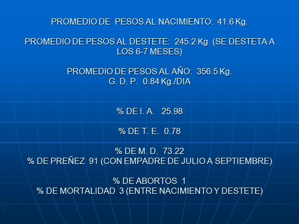 PROMEDIO DE PESOS AL NACIMIENTO: 41. 6 Kg